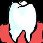 Śliczne nienaganne zęby również niesamowity cudny uśmieszek to powód do dumy.